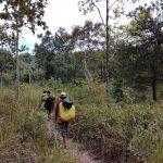 Banlung Jungle