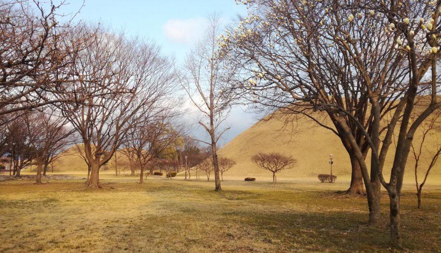 Parc des Tumulis de Daereungwon