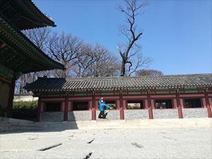 Corée du Sud – Conseils aux voyageurs